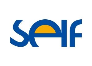 SELF Electronics logo